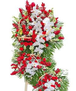 hoa chuc mung k185