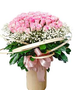 hoa sinh nhat k378