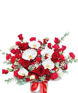hoa sinh nhat k389