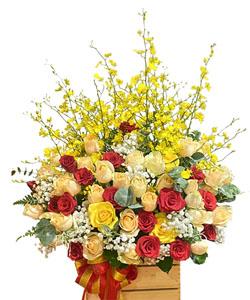 hoa sinh nhat k390