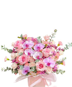 hoa sinh nhat k392