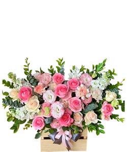 hoa sinh nhat k397